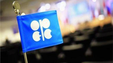 Photo of وكالة الطاقة الدولية: منتجي النفط يحتاجون لزيادة إنتاجهم