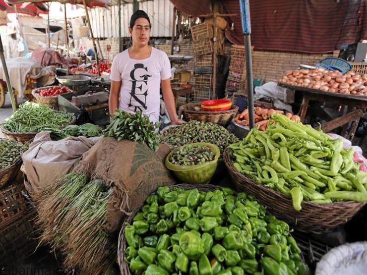 Photo of أسعار الخضروات في الاسواق اليوم الخميس 22 /10 /2020