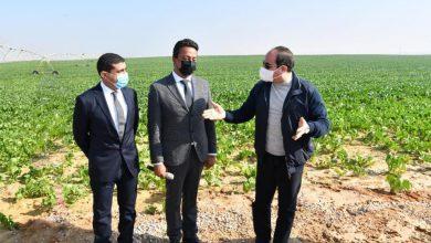 """Photo of """"مستقبل مصر للإنتاج الزراعي"""" .. الرئيس السيسي يتفقد المشروع"""