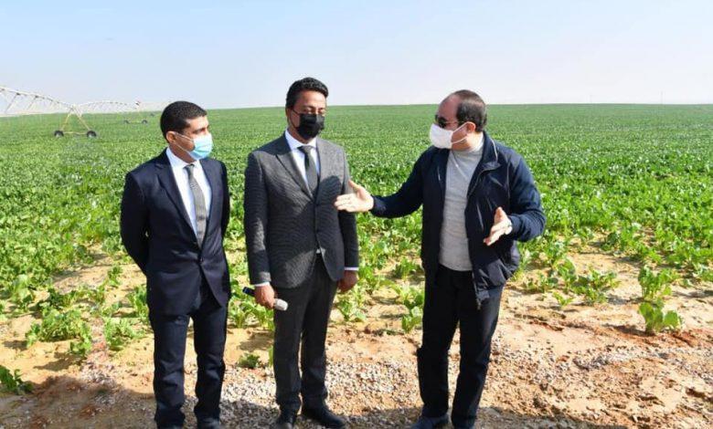مستقبل مصر للإنتاج الزراعي