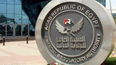 Photo of الرقابة المالية: 19.3 مليار جنيه قيمة أرصدة التمويل متناهى الصغر فى مصر عام 2020