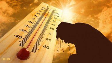 Photo of الارصاد: طقس شديد الحرارة اليوم بكافة الأنحاء.. والعظمى بالقاهرة 39 درجة وأسوان 42