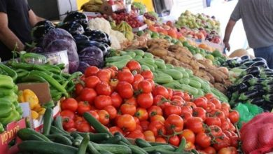 Photo of أسعار الخضروات في الاسواق اليوم الاثنين 17 / 5 / 2021