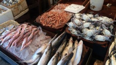 Photo of تعرف على أسعار الأسماك اليوم بسوق العبور للجملة