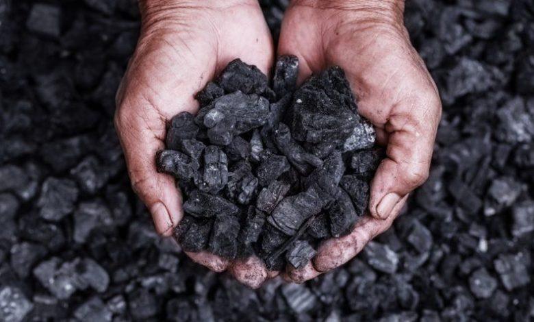 الفحم البترولي