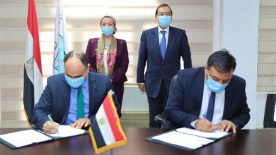 Photo of تعاون بين البترول» و«البيئة» لتنظيم إجراءات البحث عن الذهب والتعدين